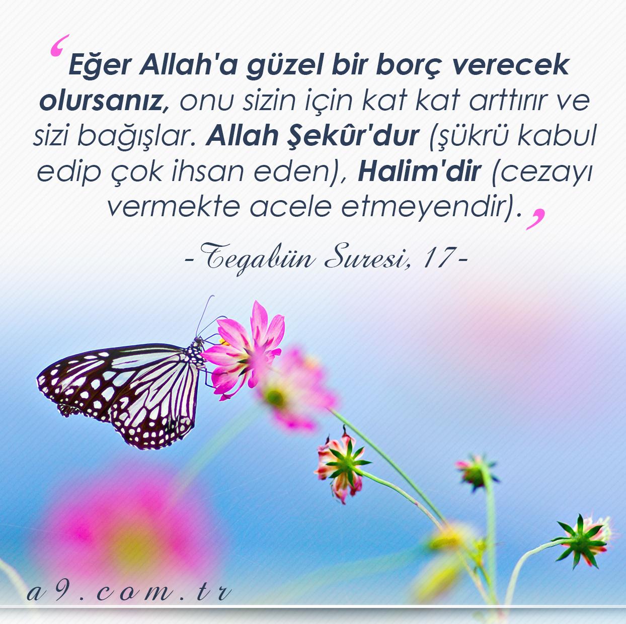 """<table style=""""width: 100%;""""><tr><td style=""""vertical-align: middle;"""">Tegabün Suresi, 17. ayet: Eğer Allah""""a güzel bir borç verecek olursanız, onu sizin için kat kat arttırır ve sizi bağışlar. Allah Şekûr""""dur (şükrü kabul edip çok ihsan eden), Halim""""dir (cezayı vermekte acele etmeyendir).</td><td style=""""max-width: 70px;vertical-align: middle;""""> <a href=""""/downloadquote.php?filename=1512714354710.jpg""""><img class=""""hoversaturate"""" height=""""20px"""" src=""""/assets/images/download-iconu.png"""" style=""""width: 48px; height: 48px;"""" title=""""Resmi İndir""""/></a></td></tr></table>"""